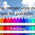 Álbumes web de Picasa - Educacion Visual