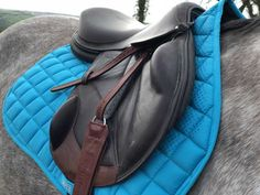 Saddlecloths – whats new and where to buy Saddle Pads, Purple Roses, Saddles, Whats New, Bag Storage, Sling Backpack, Horse Stuff, Collections, Stuff To Buy