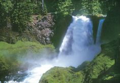 Sahalie Falls - Get a quick introduction to Oregon's roaring rivers, waterfalls, and old-growth forests with a loop trail around the McKenzie River's two grandest waterfalls. Start at 100-foot-tall Sahalie Falls, a raging cataract that pounds the river into rainbowed mist. Then the route descends past 70-foot Koosah Falls & returns along the river's far shore on the McKenzie River Trail. Interstate 5 exit 194a in Eugene, drive McKenzie Highway 126 east 68 miles. Beyond McKenzie Bridge 19 miles.