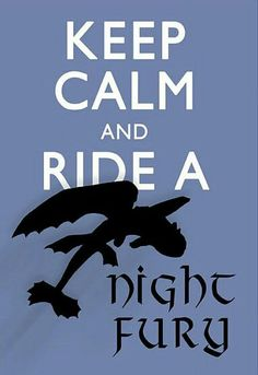 Keep calm and ride a Night Fury