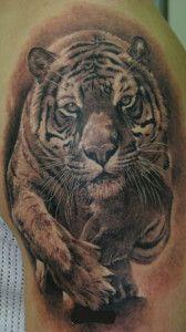 Tatuaje Tigre Tattos Que Me Haria Pinterest Tattoos Tiger