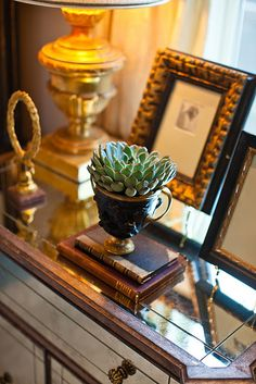 Little Succulent in a French Cup -- Photo: Amy Howard