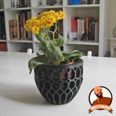 Download Vase I  by Ricardo Salomao