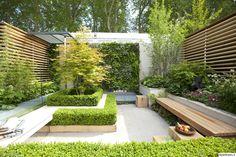 rivitalopiha,pieni piha,puu,perennat,puutarha