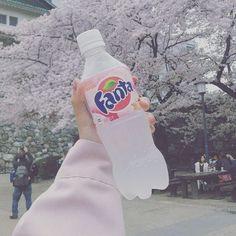 "20 Beğenme, 2 Yorum - Instagram'da 孤独な暗殺者 (@asap____pocky): ""ジュース飲みたい #ramune #fanta #sakura #nihon #aesthetic"""