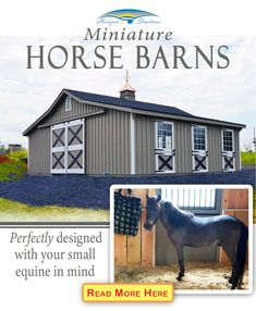 Just because your horse size is a scaled down version doesn't mean you have to scale down on the quality of the barn that you provide