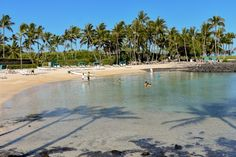 Find out all there is to know about the luxury Fairmont Orchid resort on the Big Island of Hawaii, the ultimate stay in paradise Volcano National Park, National Parks, Cozumel, Cancun, Tulum, Fairmont Orchid, Waterfall Features, Maui Vacation, Big Island Hawaii