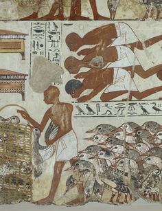 Painting from the tomb chapel of Nebamun: the fragmentary top register shows workers standing in front of a gaggle of geese and presenting a basket of eggs to two seated scribes.
