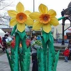 Hire Flower Stilt Walkers | Themed Stilt Walkers | Daffodil Stilts