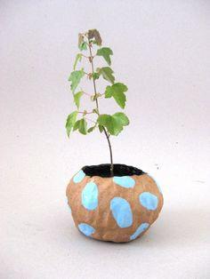 //blue dash planter