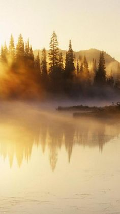Scenery, Sunset, Lake, Forest, Mountain, Landscape