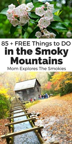 FREE things to do on your Smoky Mountain Vacation in Gatlinburg, Pigeon Forge, Townsend, Wears Valley, Bryson City, and The Great Smoky Mountains National Park || Hiking | Outdoor | USA | Travel Destinations || #Hiking #Outdoor #USA #TravelDestinations www.solarsak.com