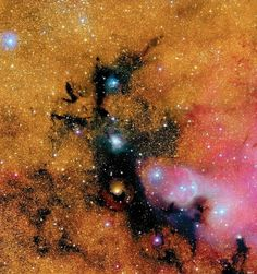The Black Dragon Nebula (IC 4678) occupies space between us and a dense spiral arm of our galaxy. The nebula, a huge complex of gas and dust, creates a distinct silhoutte as dust in the foreground blots out light from background stars.