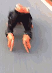 funny-gif-of-the-day-11-pics-5