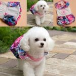 Gorgeous and nicely designed pet dress