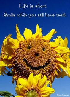 37 Best Smile Quotes Images Messages Smile Quotes Thoughts