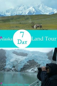 In this article I've provided my best advice for a one week land tour of Alaska.  There is a lot of land to cover, so a rental car is a necessity.  The roads are perfectly drivable and time goes quickly because there is so much to look at.  While driving, just make sure to watch out for wildlife, and if there are more than a couple of cars behind you, be considerate and pull over so they can pass. #Alaska #Anchorage #Seward