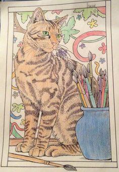 Enjoyed doing this one                        #cat #cute #kawaii #art