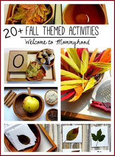 Over 20 fall themed activities for toddlers and preschoolers