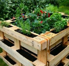 Hochbeet aus Paletten selber bauen ⭐ Bauanleitung ✔ Hochbeet aus Europalette… Building a raised bed of pallets yourself ⭐ Building instructions ✔ Create a raised bed of Euro pallets ✔ Fill ✔ Planting ✔ Instructions ✔ Tips ✔ Ideas ✔ DIY ✔ Guides