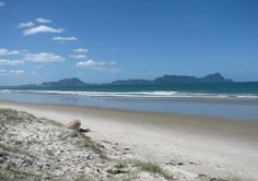 ruakaka, new zealand, love our beach, we are so lucky to life close to it.