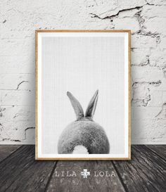 Rabbit Print Rabbit Butt Tail Black and White Animal by lilandlola