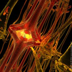 communication: artist rendering of a neuron at work