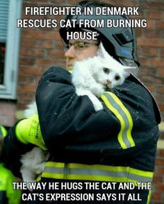 Firefighter saves cat.