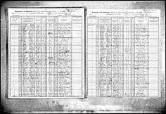 1915 Census Leona Greenbaum
