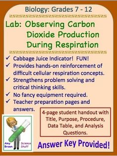 Science Stuff: Red Cabbage pH Indicator in Respiration Labs Science Curriculum, Science Resources, Science Education, Science Ideas, Activities, Biology Lessons, Science Lessons, Life Science, Biology Experiments