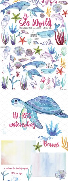 Freebies 31 Hand Painted Watercolor Elements Kit Vector Illustrations Sea Animals Dolphin Underwater