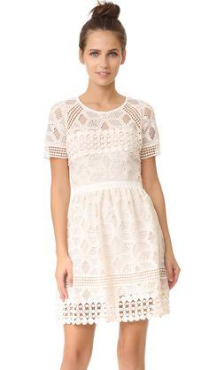 saylor valencia mini lace dress