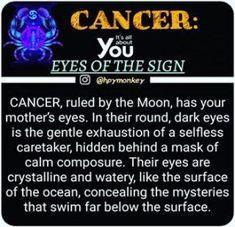 15 Trendy Eye Facts Signs #eye Zodiac Traits, Leo Zodiac, Zodiac Signs, Zodiac Cancer, Cancer Horoscope, Zodiac Horoscope, Zodiac Quotes, Aquarius And Cancer, Sagittarius