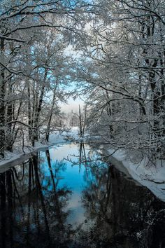 Another world and universe citizen... — Bright Winterday | Lauri Lohi