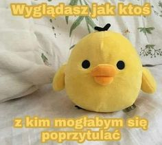 Sweet Memes, Polish Memes, Sweet Pic, Pick Up Lines, Wholesome Memes, Reaction Pictures, Cute Cats, Cute Pictures, Pikachu