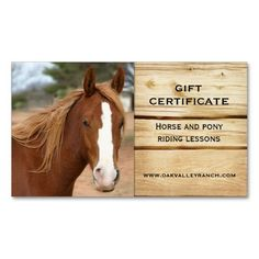 Gift certificate 2000 horse gifts pinterest horse gifts free horse certificates horse riding lessons gift certificate template business card zazzle yadclub Images