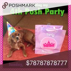 Looking for Host Picks for my posh party- share😉 Join me on 11/20, theme to be added once I receive it Dresses