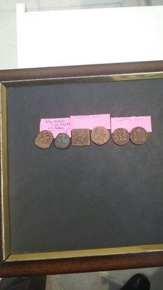 Coin-24