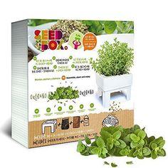 Oferta: 11.6€ Dto: -29%. Comprar Ofertas de Seed Box SBCUOR - Huerto urbano de orégano barato. ¡Mira las ofertas!