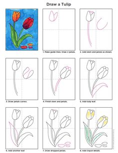 Flower Art For Kids Drawing 18 Ideas Art Drawings For Kids, Drawing For Kids, Easy Drawings, Art For Kids, Tulip Drawing, Plant Drawing, Drawing Flowers, Painting Flowers, Drawing Art