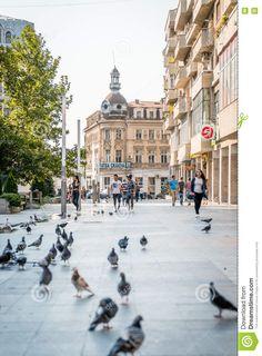 Macedonia, Albania, Street View, Party, Parties, Fruit Salads