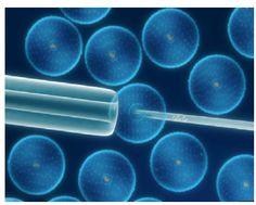 GENIO Italiano Giuseppe Cotellessa: Si fa curare con cellule staminali dopo l'ictus e ...