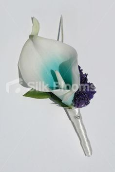 Aqua Picasso Lily & Purple Climbing Clover Wedding Buttonhole Aqua Picasso Lily & Purple Climbing Clover Wedding Buttonhole [Tori - Buttonhole (2)] - £8.99 : Silk Blooms UK