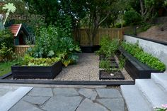 Raised Garden Beds, Raised Beds, Veg Garden, Vegetable Gardening, Barndominium, Cool Plants, Garden Landscaping, Outdoor Living, Garden Design