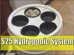 $25 DIY Hydroponics 5 Gallon Bucket Deep Water Culture - YouTube