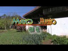 Labores de Mayo en el huerto (tuhuertofacil.es)