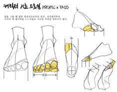 """타코작가 on Twitter: """"발 그릴 때 발가락 부피감 맞추는 방법… """" Anatomy Poses, Anatomy Art, Anatomy Drawing, Human Anatomy, Anatomy Practice, Drawing Practice, Drawing Lessons, Drawing Tips, Figure Drawing Reference"""