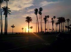 LA Santa Monica CA Ali Abedi