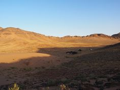Extreme Environments - A 'Desert Experience' camp for tourists, Zagora, Morocco