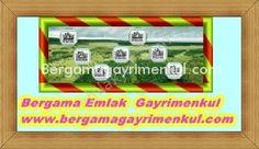 İzmir dikili demirtaş ta satılık etrafı çevrili süRgülü demire kapıl içinde suyu olan zeytinlik meyva bahçesi bağ tarla arazi 13,000 m2